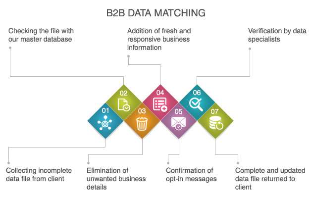 B2B Data Matching Services